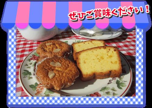 ぽりりずむ マドレーヌ パウンドケーキ サンプル