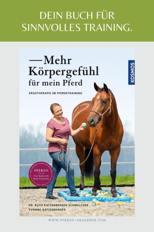 Ergotherapie im Pferdetraining.