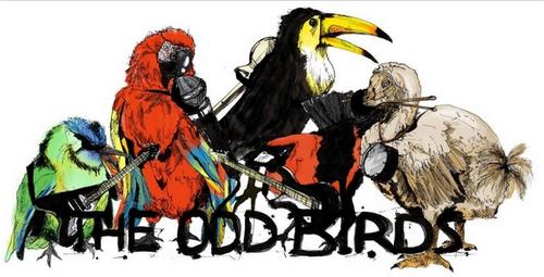 The Odd Birds