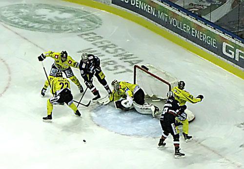 Niklas Treutel Krefeld Pinguine Eisbären Berlin