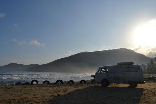 Bahía de Patanemo - Antes de que llegase la marabunta