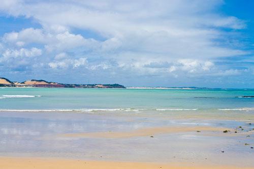 Bahia Golfinho