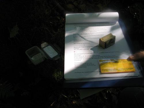 Clue und ein gefundener Stempel