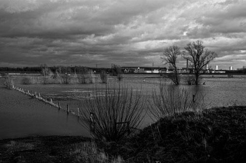 Ruhrort Hochwasser Dez. 2012 sw