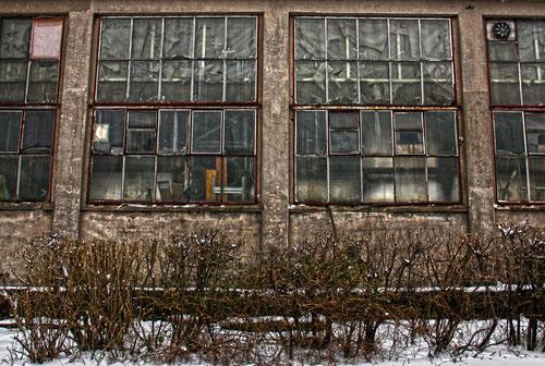 Fensterfront Industriegebäude