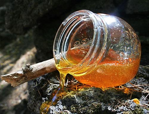 Miele dell'Etna