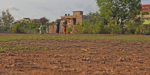 Trockenheit: Frauen tragen Holz auf den Köpfen nach Hause.