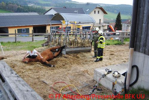 © Freiwillige Feuerwehr Altenberg/Pressestelle Bezirksfeuerwehrkommando Urfahr-Umgebung