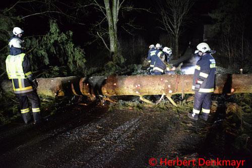 Feuerwehr; Blaulicht; BFKDO Urfahr-Umgebung; Sturm; Einsätze;