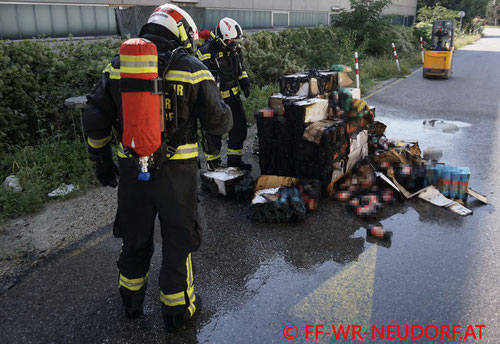 Feuerwehr, Blaulicht, FF Wiener Neudorf, Sprinkleranlage, Brand, Halle, Industriezentrum NÖ Süd