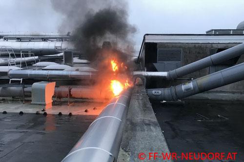 Feuerwehr; Blaulicht; FF Wiener Neudorf; Brand; Industrieanlage; Produktionshalle;