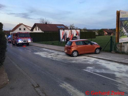 Feuerwehr; Blaulicht; Ternitz; PKW; Unfall; Hauseinfahrt;