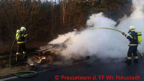 Feuerwehr; Blaulicht; FF Wiener Neustadt; PKW; Brand; Sturmschaden;
