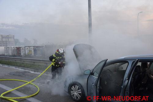 Feuerwehr; Blaulicht; FF Wiener Neudorf; Brand; A2; PKW;