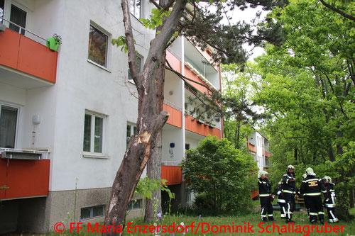 © Freiwillige Feuerwehr Maria Enzersdorf/Dominik Schallagruber