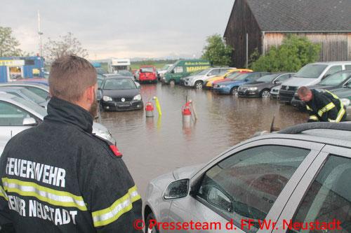 Feuerwehr, Blaulicht, Starkregen, Wr. Neustadt, Wasser