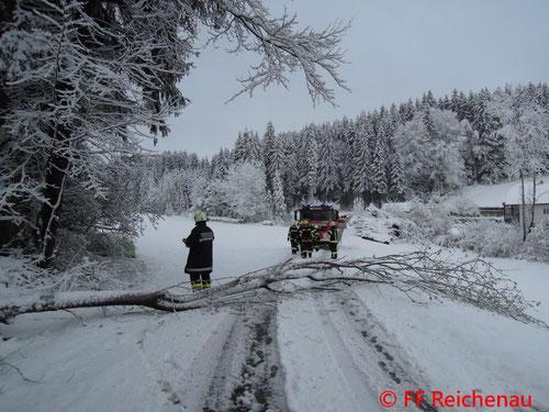 © Freiwillige Feuerwehr Reichenau