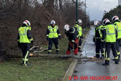 Feuerwehr; Blaulicht; FF Wiener Neudorf; Sturm; Sturmfront Petra;