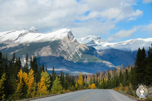 Icefields Parkway (C) Takly on tour