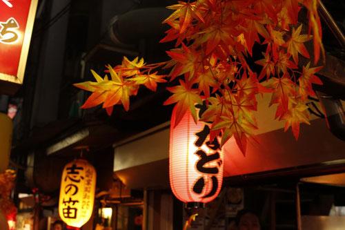 """Omoide Yokocho also called """"Piss Alley"""" in Tokyo"""