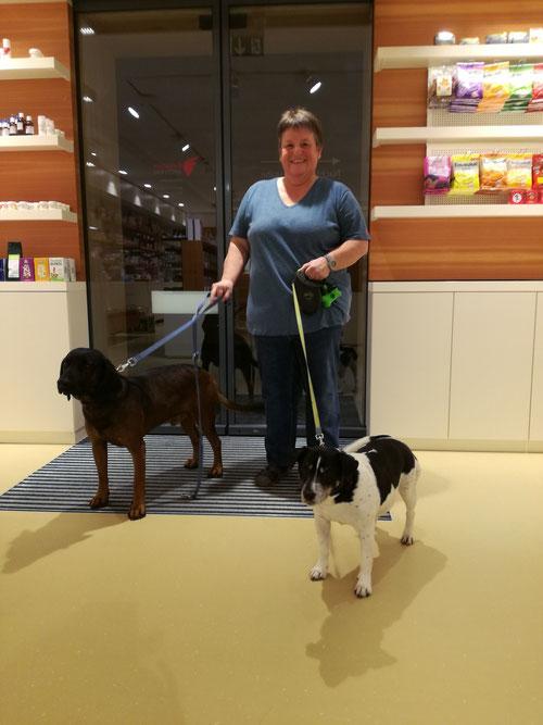 Hundesitting während Frauchen und Herrchen gemütlcih einkaufen