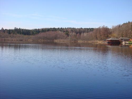 Holzöstersee mit Seebüffet