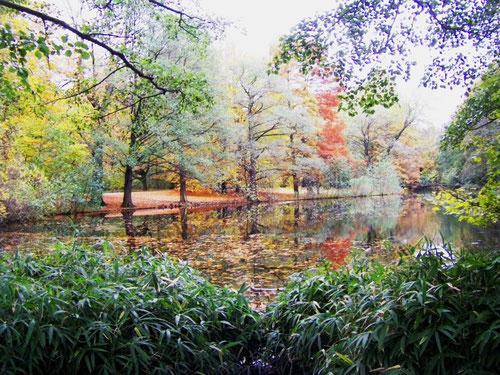 Tiergarten, südlich bei Neuer See