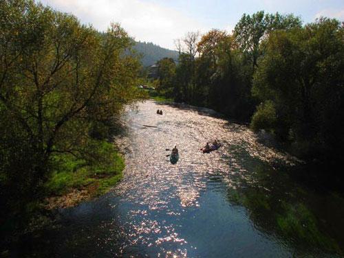 der noch fast unberührte Flußlauf der jungen Donau
