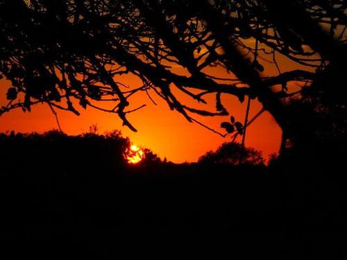 durch den täglichen Sonnenuntergang, wurde uns die freie Natur immer vertrauter