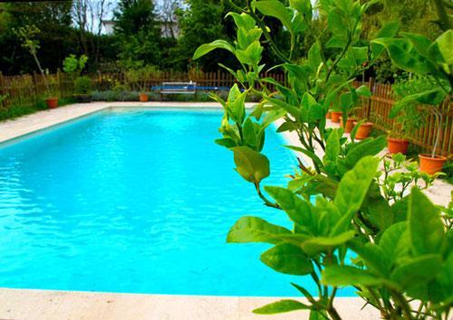der riesige Pool im Garten läßt ein mediteranes Gefühl entstehen - ein herrliches Angebot für die Gäste
