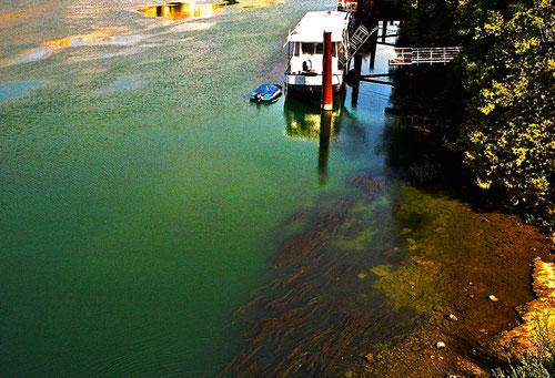 Hausboote auf der grünen Rhone