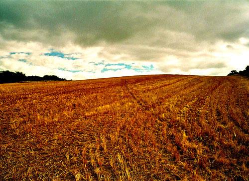 die Getreidefelder waren bereits abgeerntet