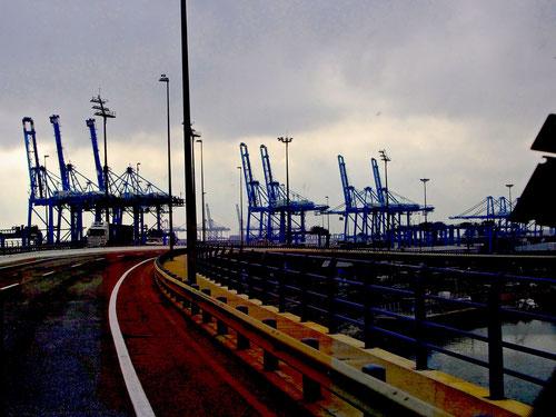 im spanischen Hafen von Alcaciras