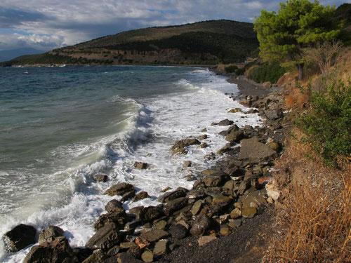 lebendiger Seegang an der Küste
