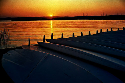 Sonnenuntergang am Neusiedler See - UNESCO-Welterbe