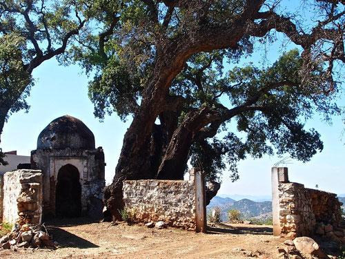 eine historische Moschee - an einem wunderbaren Platz