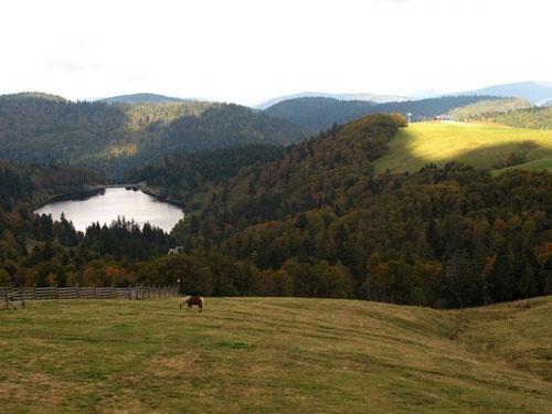 das Vogesen-Panorama - rundum ein echtes Wander-Paradies