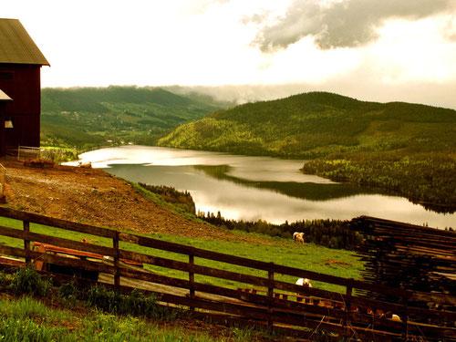 Blick auf die Seen-Platte unterhalb der Wiesen und Felder von Bisproesen