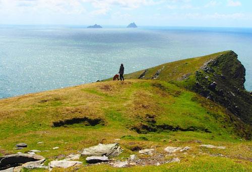 Über den Klippen von Dungarvanbay