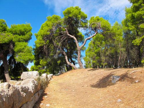 im Park von Epidauros