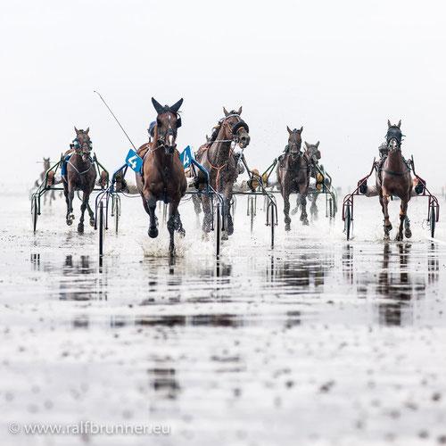 Pferderennen auf dem nassesten aller Turfs