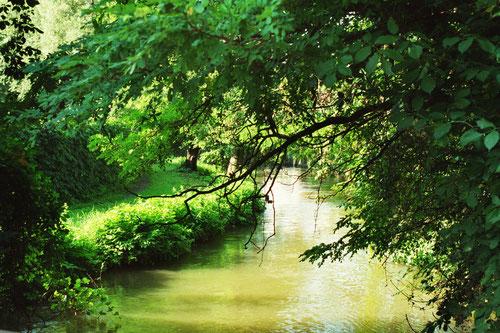 Wir orientieren uns am  Vorbild der Natur: durch Ausgewogenheit und eine höhere Ordnung entstehen Wohlbefinden und Schönheit