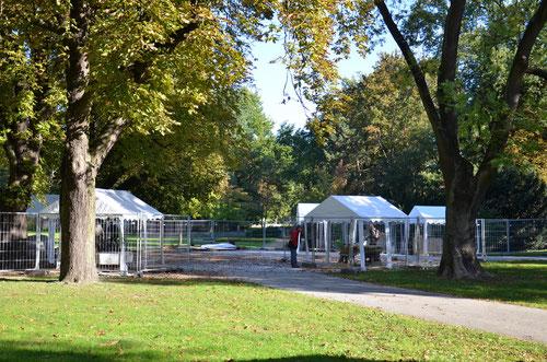 für einen Monat lang Werkstatt unter freiem Himmel im Stadtpark Bernau bei Berlin