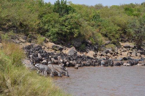 Vor der Überquerung des Mara Rivers