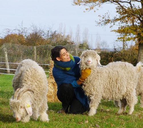 isa et ses chèvres angora
