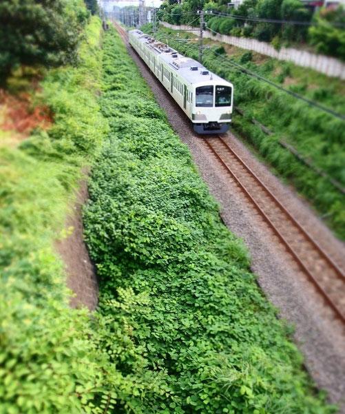 7月22日(2014) いちご橋の上から:西武多摩川線にかかる橋(小金井市)