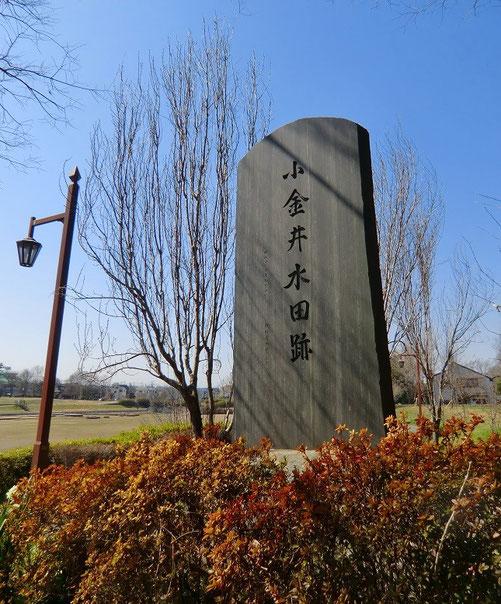 3月12日(2013) 小金井水田跡碑(碑の下には「小金井田圃」の記録と籾が納められている:小金井市)