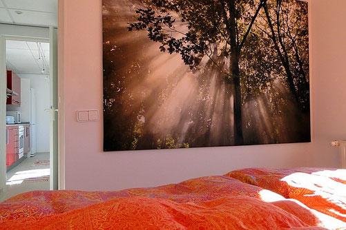 Schlafzimmer der Ferienwohnung Valencia, Dezember 2011. Blick in eine lichtdurchflutete Baumkrone, Bassetti-Bettwäsche-Michelle, Bild: Ikea
