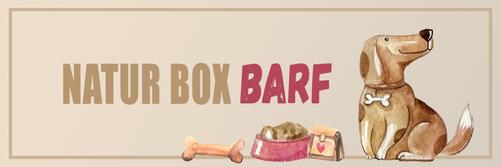August dogz box Gartenparty