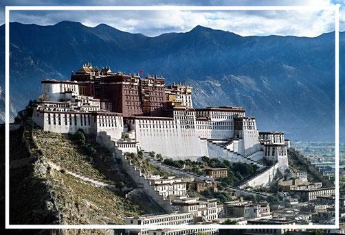 lhasa apso geschiedenis